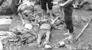 kritipur dead body