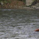 panchami bagmati river