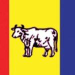 raprapa nepal