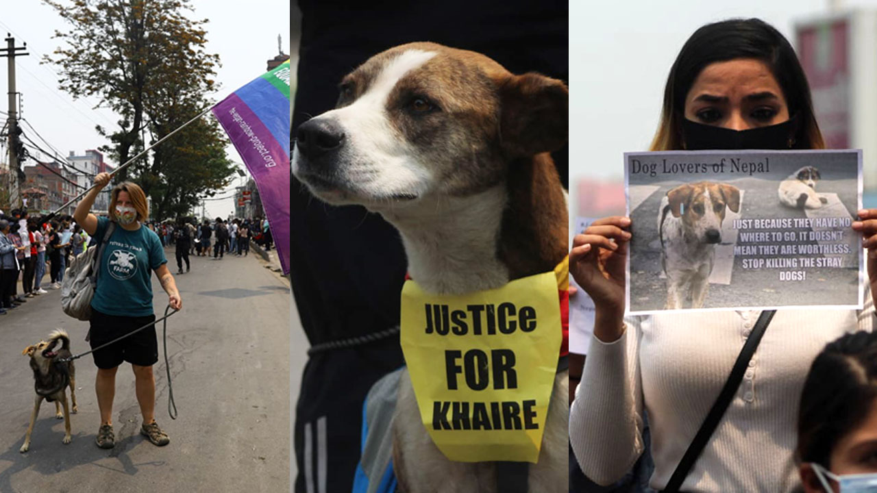 justice for khaire
