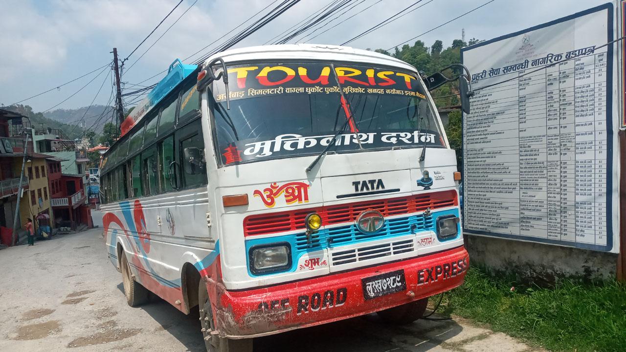 gulmi bus