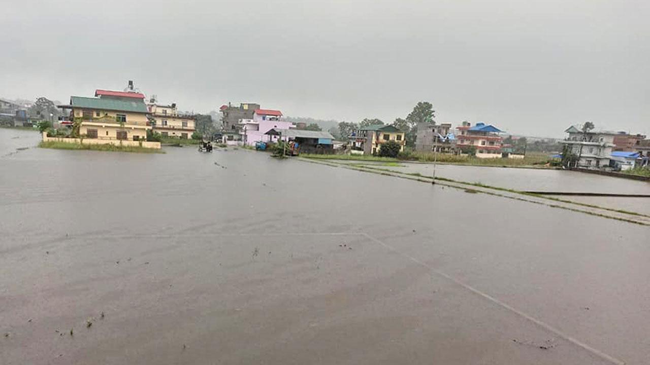 Bharatpur duban